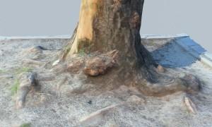 3D Photoscanning