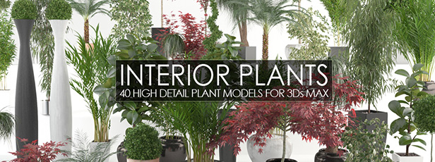 VP Interior Plants